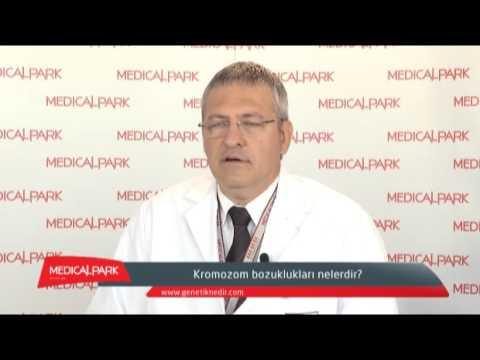 Kromozom Bozukluğu Nedir   Uzm Dr Yaman Sağlam