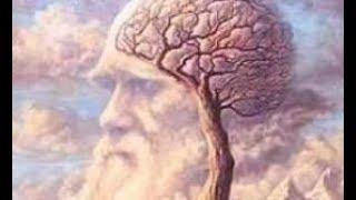 心理測試:從第一眼看到的東西就懂你是個怎樣的人! thumbnail