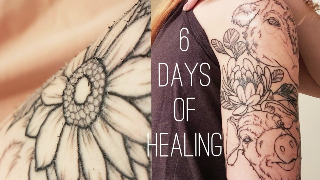 TATTOO HEALING STAGES