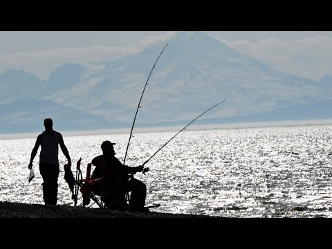 HOW TO CATCH HALIBUT FROM SHORE!!