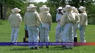 Yvelines | Une formation à l'apiculture à la Bergerie Nationale