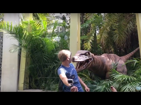 The Raptor almost ATE ME at Universal's Islands of adventure