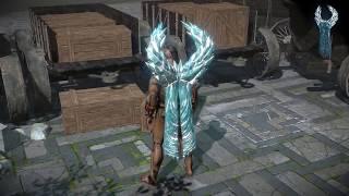 Path of Exile: Ice Cloak