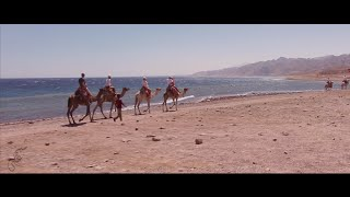 Dahab, Egypt: The Water Sports & Natural Landscapes Heaven