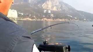 Рыбалка на Чёрном море в Крыму.(Это видео о рыбалке на Чёрном море. Задавайте свои вопросы в комментарии., 2015-11-04T18:44:28.000Z)