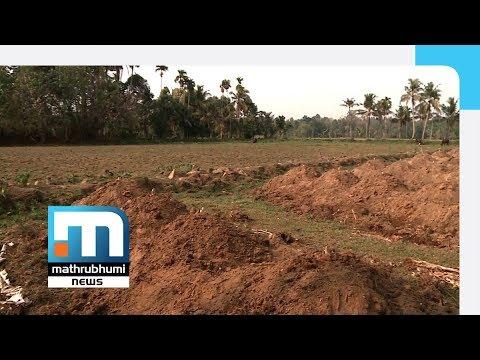 Antony Perumbavoor Violates Wetland Act  Mathrubhumi News