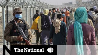 Afghans camp out along Pakistan border as they try to flee
