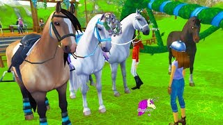 Festival + Mistfall Rangers ! Star Stable Online Horse Let's Play Quest Game