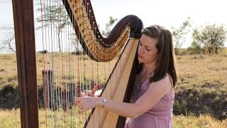 My Heart will go on - Harp Cover