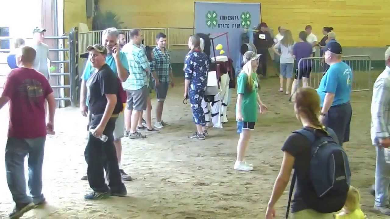 Minnesota 4 H Lama Costume Competition At The 2013