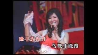 Wo shi yi zhi hua mei niao,Karaoke,by, 陈文君, Chen Wen Jun