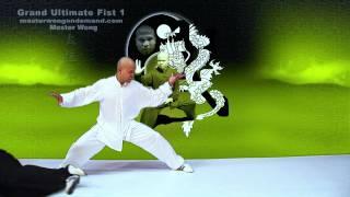 Tai Chi combat tai chi chuan fight style use tai chi - lesson 16