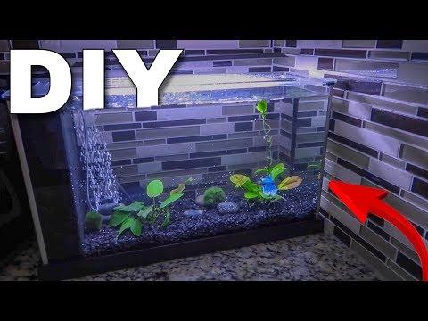 The NEW BETTA FISH AQUARIUM...