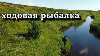 ХОДОВАЯ РЫБАЛКА НА СПИННИНГ Тундровые реки не дают скучать