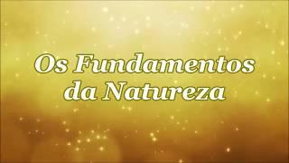FUNDAMENTOS DA NATUREZA por Pierina Marina Pelinser