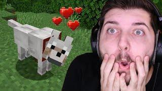 Minecraft'ta arkadaş buldum!!!