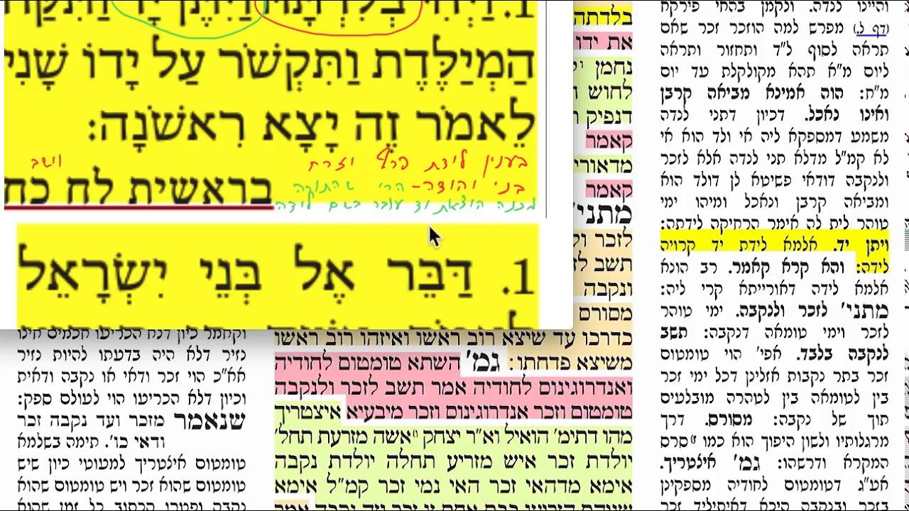 דף יומי מסכת נידה דף כח Daf yomi Nidda daf 28. שמואל נבון