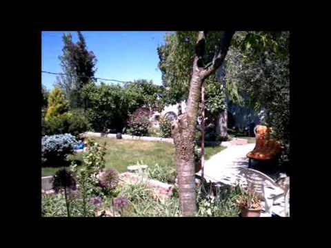 Jardines espa oles jardines de casas jardines rusticos for Bancos de jardin rusticos
