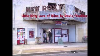 Little Bitty Love of Mine by Davis/Voelker at The Salvage Yard