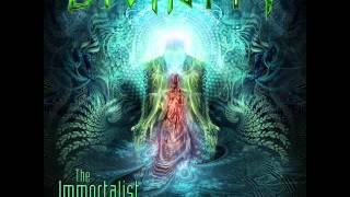 Divinity - DMT [ft Björn Strid]
