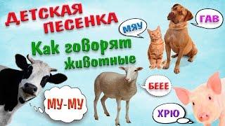 Веселая песенка для самых маленьких! Как говорят животные/Funny song for kids! How animals talk!
