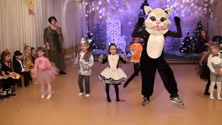 Танец кошек 2017