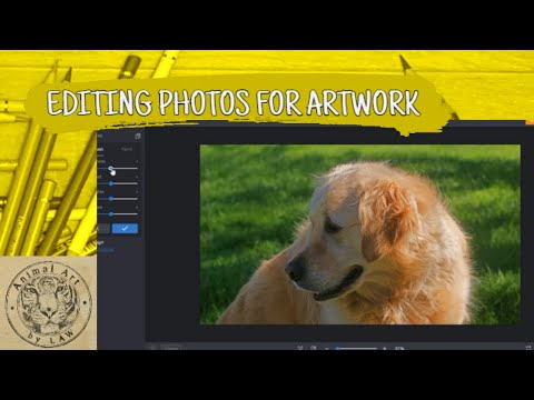 Editing Reference Photos To Create Artwork From Using BeFunky