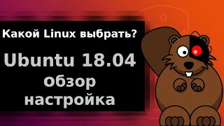 Ubuntu 18.04 обзор и настройка после установки