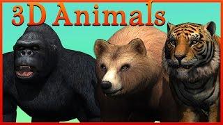 Crazy Monkey Face с текстами | Сумасшедшие Gorilla & Динозавры Короткие развлечения Фильмы для детей