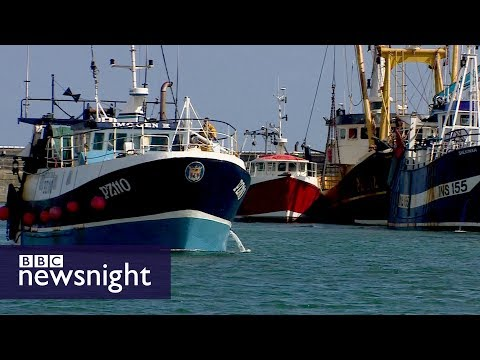 What will Brexit mean for different sectors and their EU workers? - BBC Newsnight