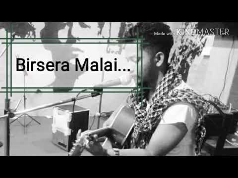 Birsera Malai Cover | Amit Thapa Magar | Adrian Pradhan