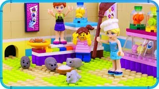 ♥ LEGO Elsa Has RAT PROBLEM in her Candy Store
