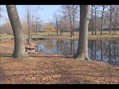 Working For Delaware's Wetlands