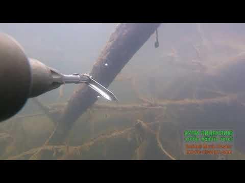 Подводная охота в сентябре на р Дема