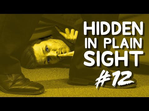 Can You Find Him in This Video?  Hidden in Plain Sight #12