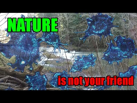 Download Nature Is Not Your Friend