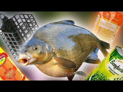 РЫБАЛКА НА ФИДЕР И УДОЧКУ НА РЕКЕ СУХОНА + Подводная Съёмка на Рыбалке в Великом Устюге