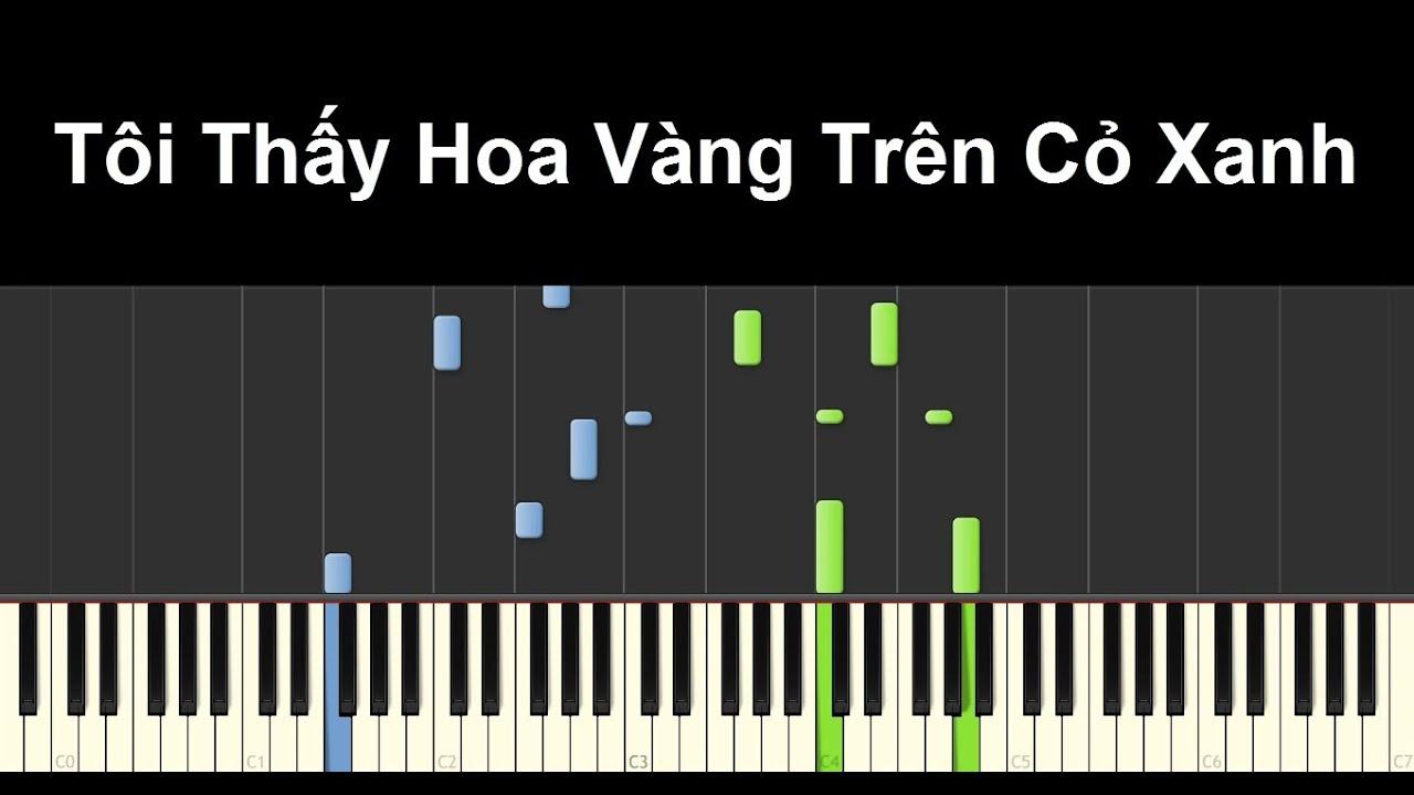 Tôi Thấy Hoa Vàng Trên Cỏ Xanh (OST)   Piano Tutorial #60   Bội Ngọc Piano