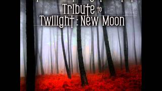 Hearing Damage - Vitamin String Quartet Tribute to Twilight: New Moon