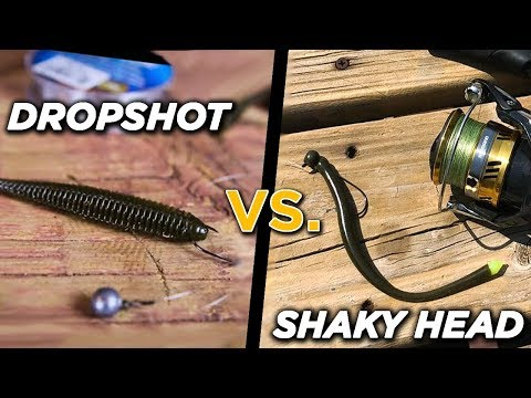 DROPSHOT Vs. SHAKY HEAD   When To Use Each Finesse Fishing Rig
