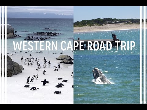 SOUTH AFRICA  - WESTERN CAPE ROAD TRIP: Cape Town to Plettenberg Bay