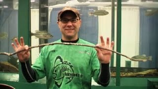 How To Build A Fishing Pole Using A Stick : Fishing 101