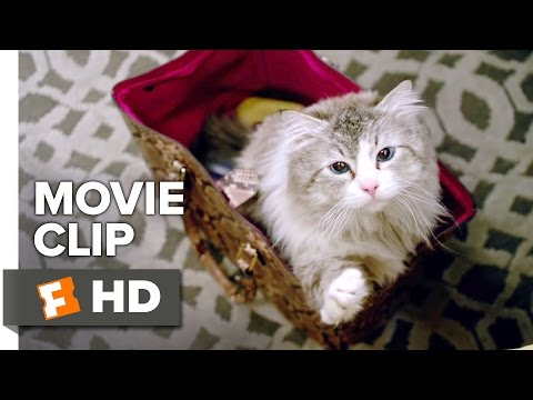 Nine Lives Movie CLIP - Who Needs a Litter Box? (2016) - Kevin Spacey Movie