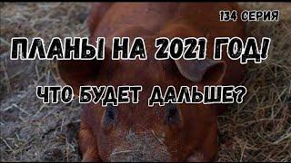 Планы на 2021 год !Что будет дальше?