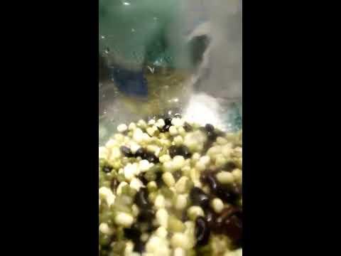 Mung Bean Sprouting at home,jams way.