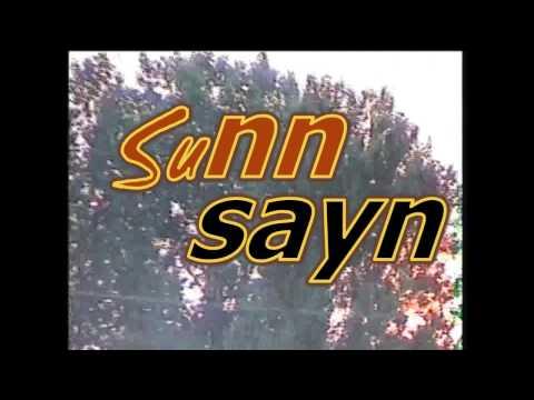 Sony Ccd-trv418e Video