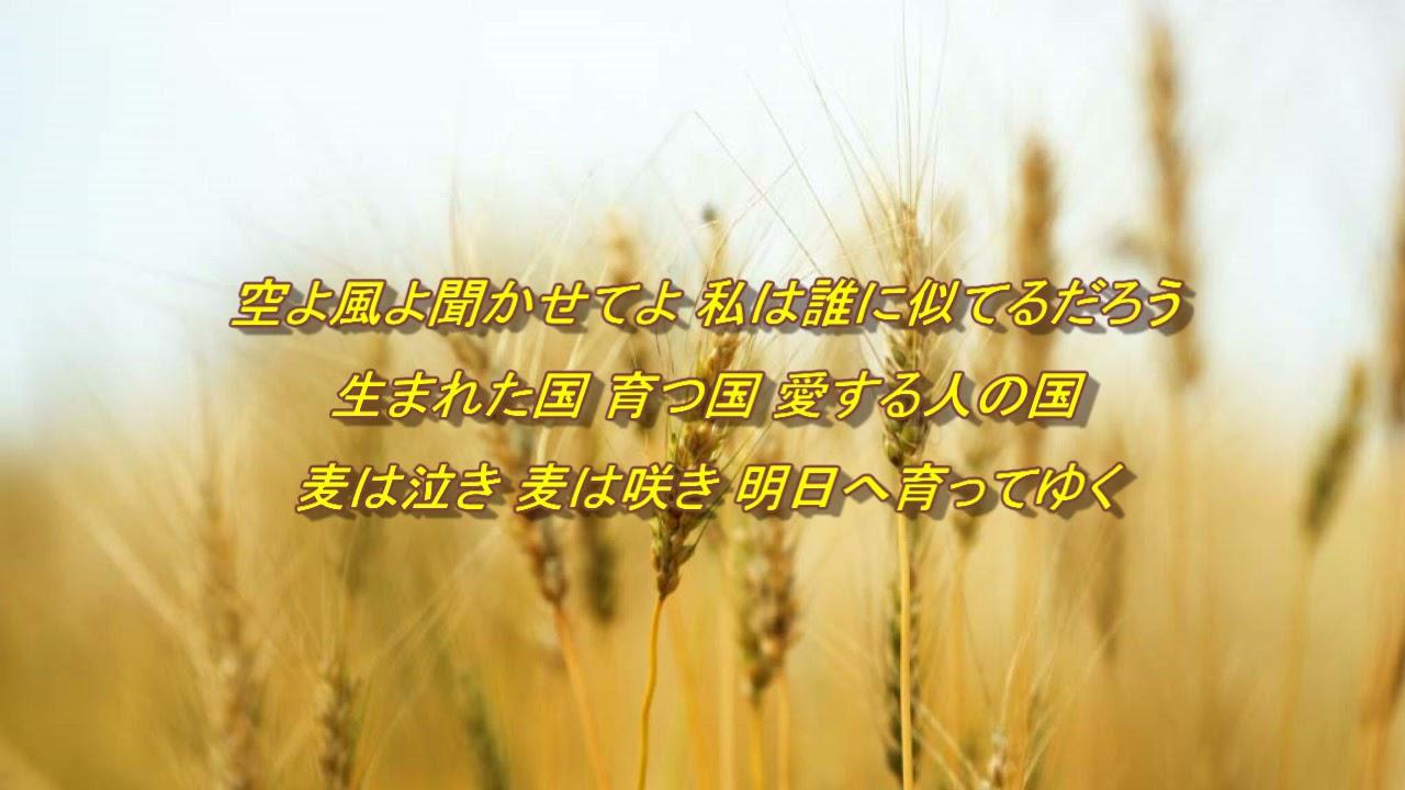 麦の唄 中島みゆき【cover】