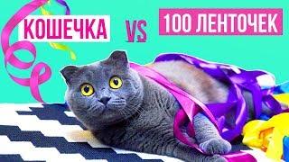 КОШЕЧКА VS 100 ЛЕНТОЧЕК | ВСЕ КОТИКИ ТАКИЕ