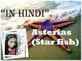 Asterias (starfish) in hindi (हिन्दी मे)