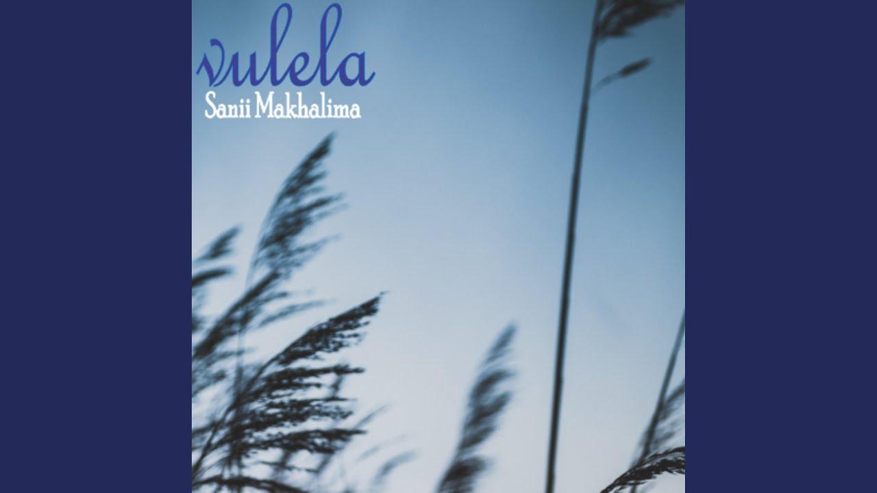 Download Vulela